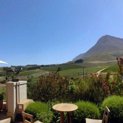 food and wineries of south africa - only1invillage.com