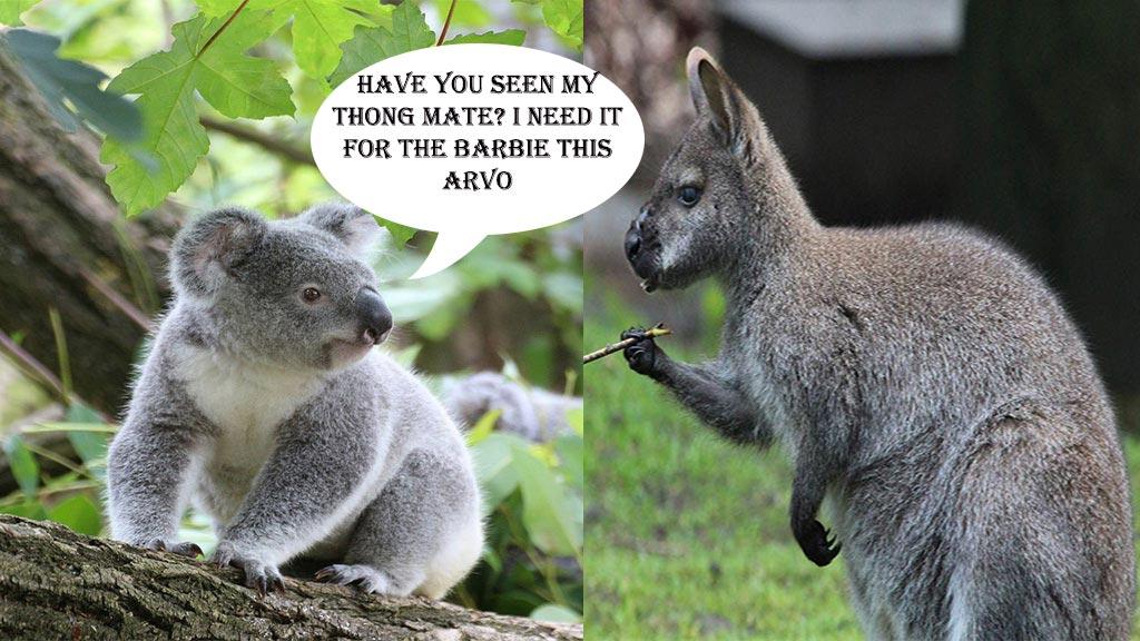 Aussie Slang - Only1inVillage.com